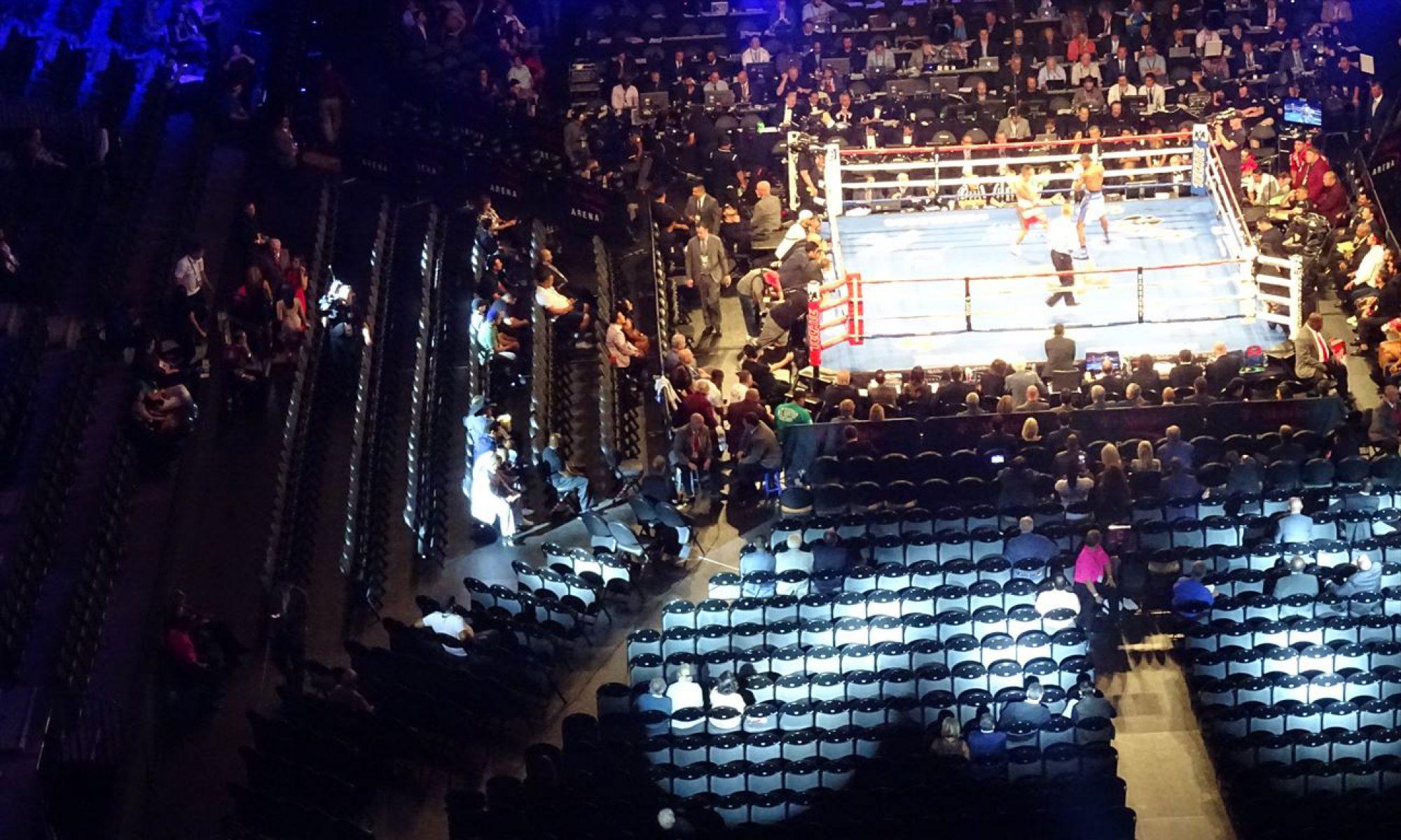 世界のボクシングを観に行こう!